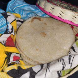 Tortillas de maíz en el tortillero